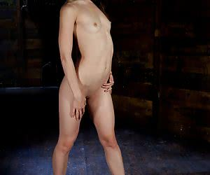 Related gallery: sensi-pearl (click to enlarge)