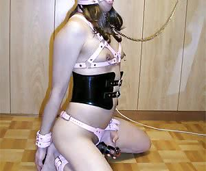 Category: shemale bondage bdsm
