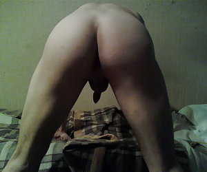 Small white cock pictures